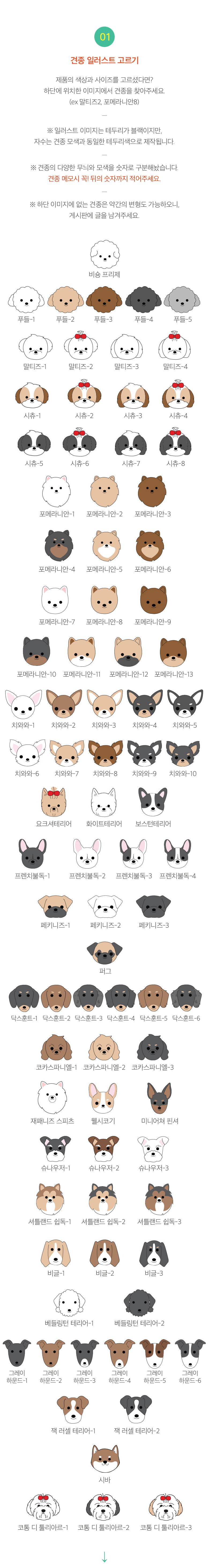 상세정보5